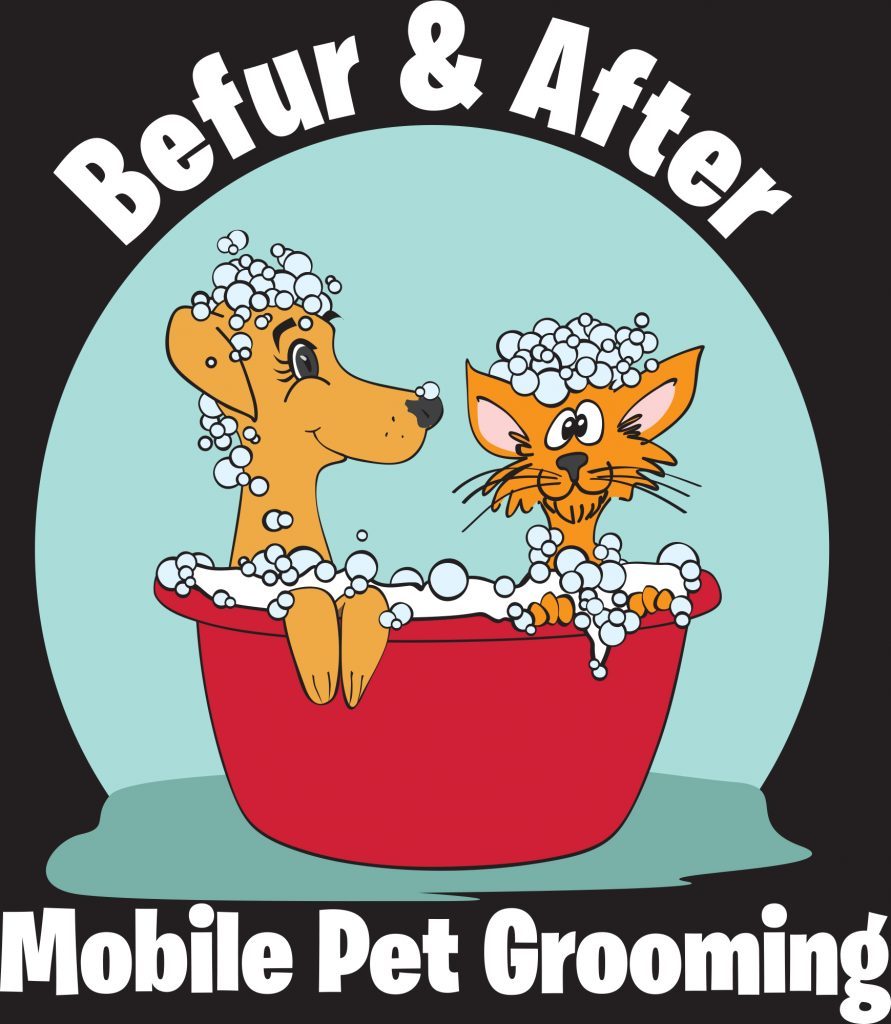 Befur and After logo