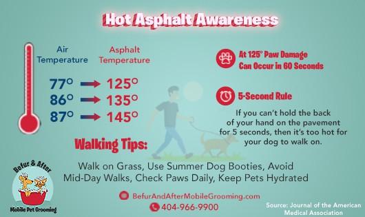 Hot Asphalt Awareness and Paw Health Tips