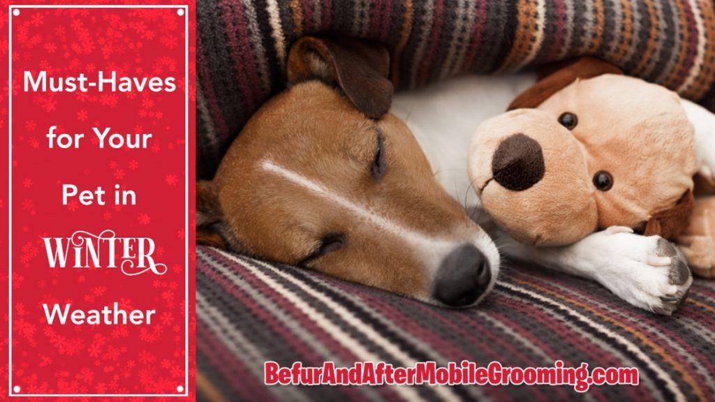 Sleeping dog cuddling with stuffed dog toy